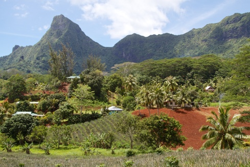 Interior shot of lush land & beautiful mountains, Moorea, 9/26/14