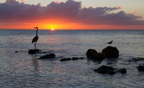 Christmas Sunset, North Captiva Island, FL