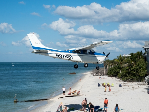 We were directly next to a grass airstrip and saw this all week. Christmas Day, North Captiva Island, FL